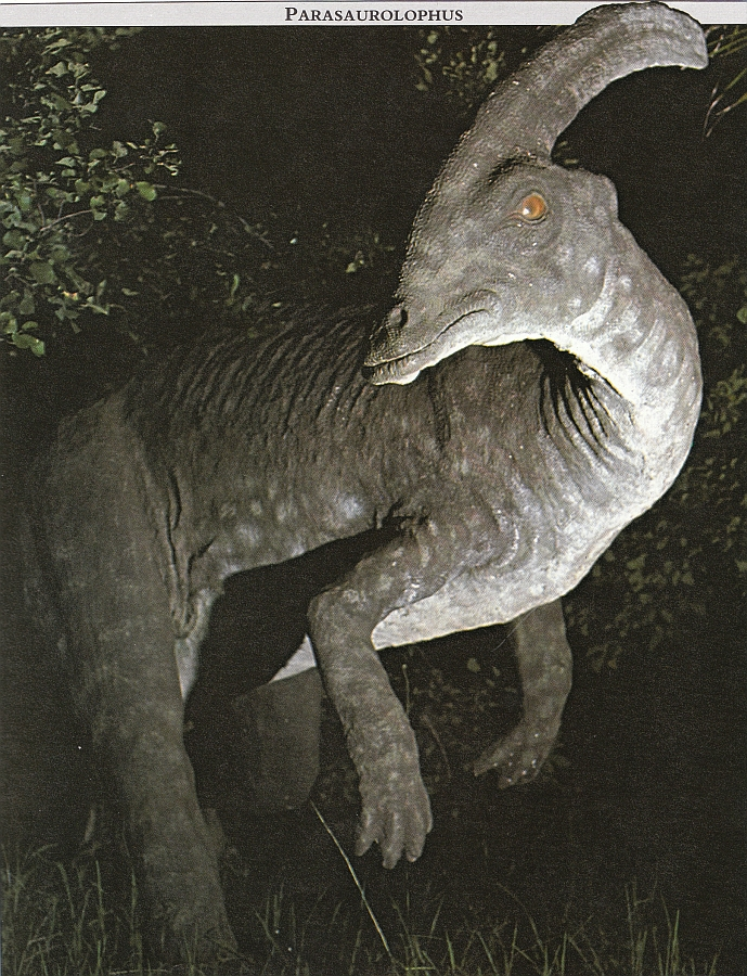 Parasaurolophus Facts For Kids